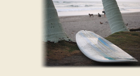 We offer surf vacation packages