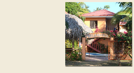 Your hotel on the beach